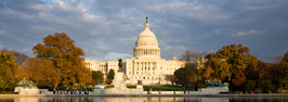 Small image of U.S. Capitol